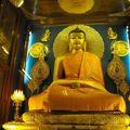 Bonne annee 2009 de bodhgaya-inde