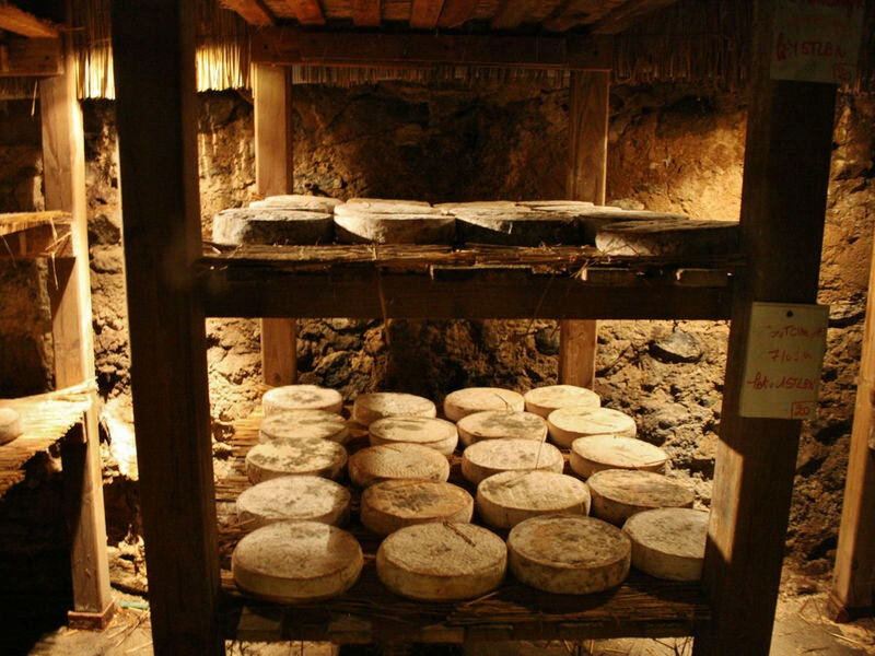 fromages st nectaire