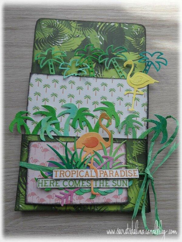 2017 06 - Loaded env tropical paradise vide