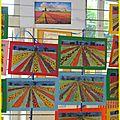 Arts visuels : champs de fleurs aux pays bas
