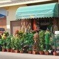 Fleuriste Meknes