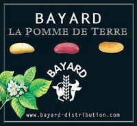 Bayard distribution