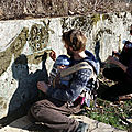 Moss painting at alma mater community garden in bures-sur-yvette