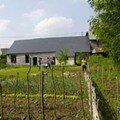 Jardin de Draize (jardinage et insertion)