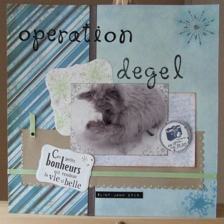 operation_degel_1