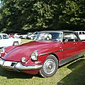 Citroën ds 21 palm beach cabriolet chapron