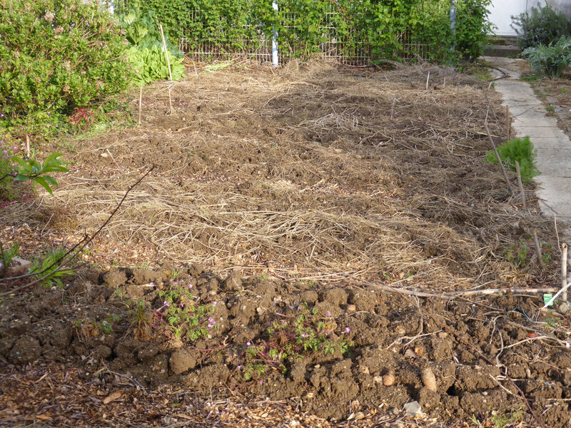 1-potager, planches (2)