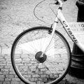 Vélo (holga)_7340