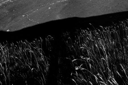 ombres_et