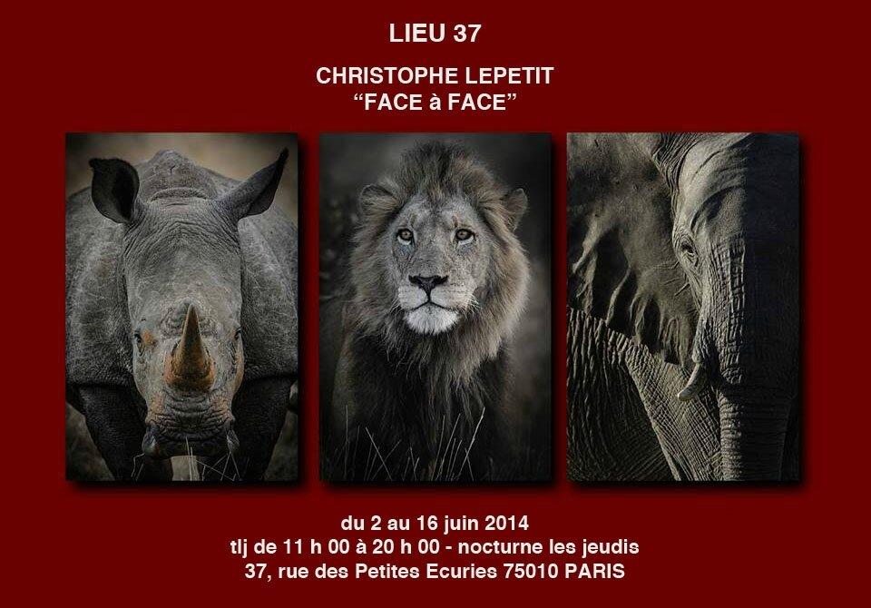 Exposition Christophe Lepetit