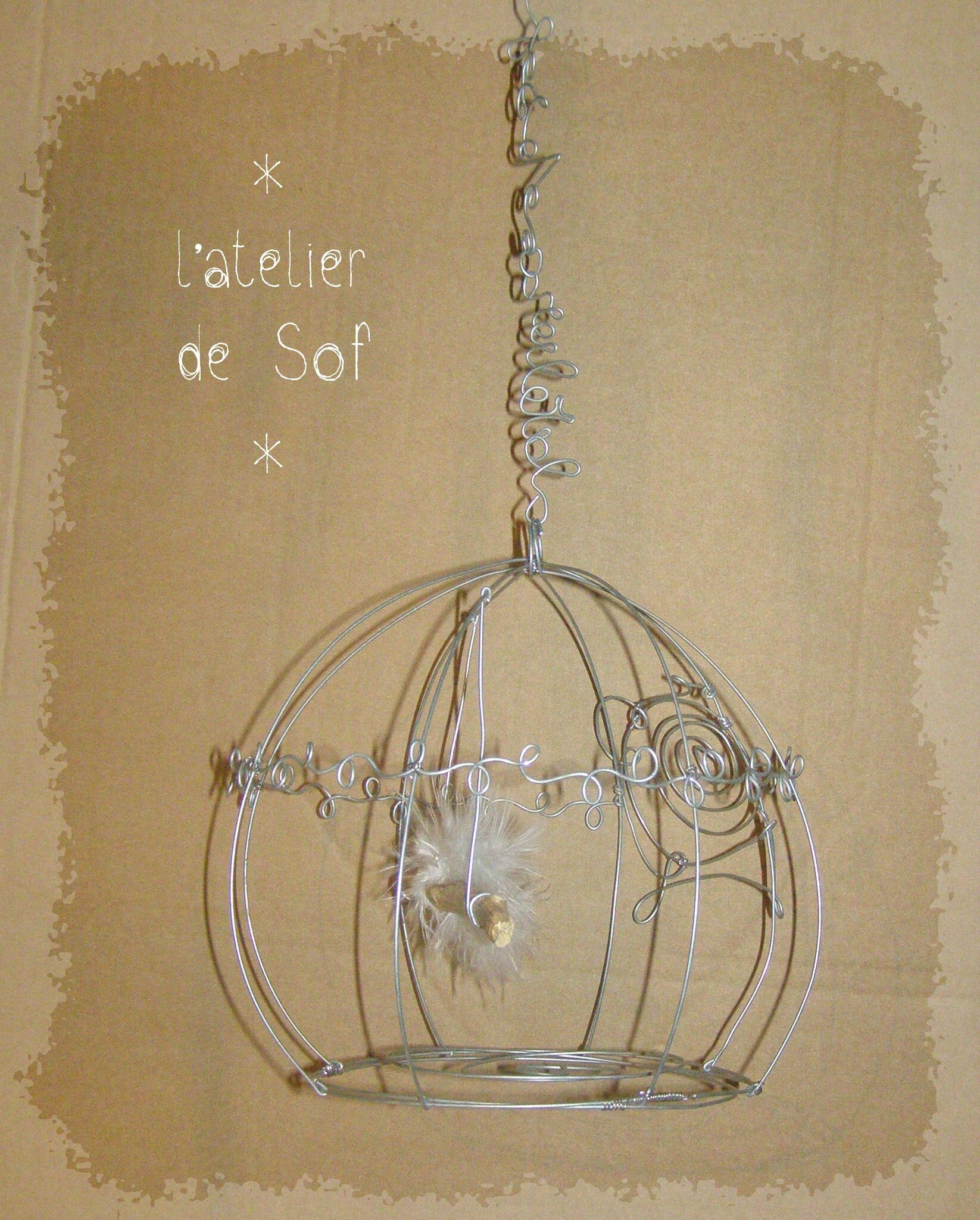 cage fil de fer galvanisé
