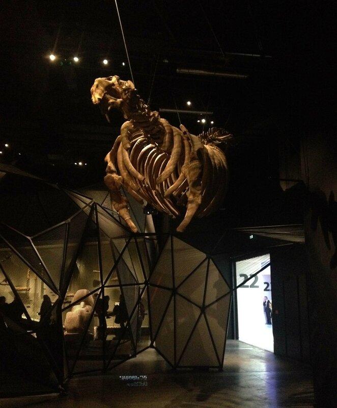 6-ouverture musee des confluences-Lyon