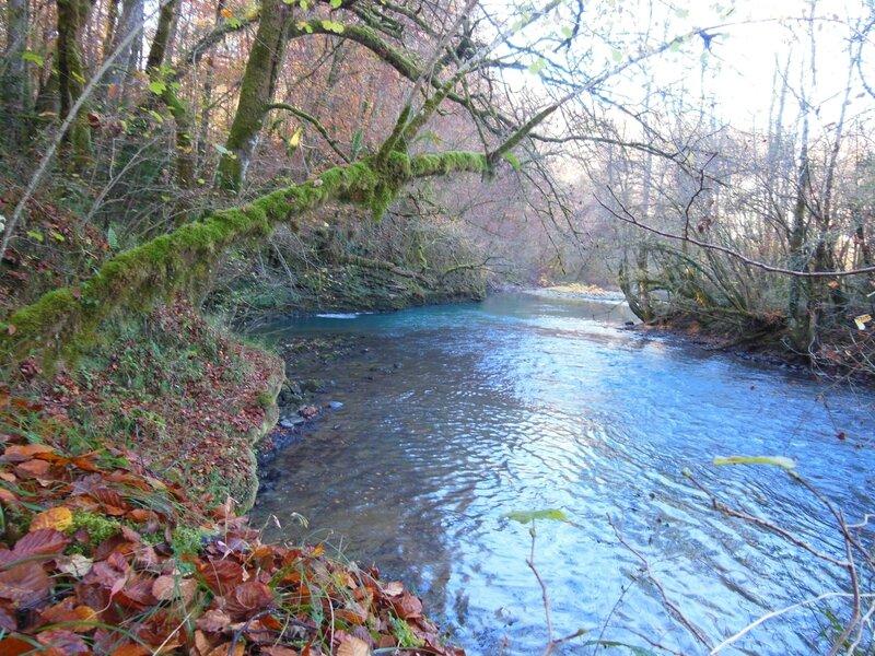 Gave d'Ossau et forêt Bager 055