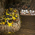 Marabout africain guérisseur traditionnel tous genre de maladies malayikan