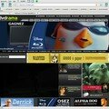 Software : netscape 9
