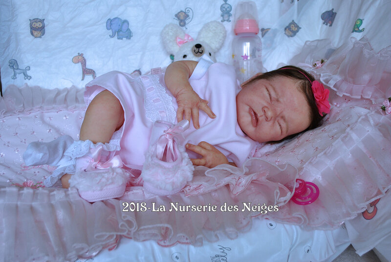 NDN-Lucia022