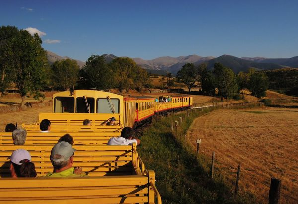 Ti train jaune 312