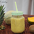 Smoothie ananas, mangue, kiwi et melon