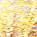 L'or pâle