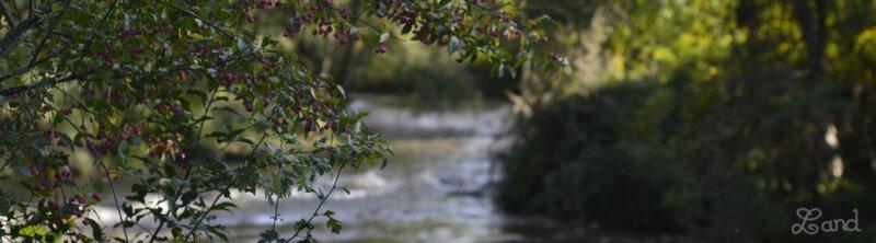 Land_riviere