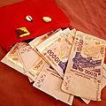 Porte monnaie magique gratuit