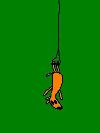 chien_qui_fait_du_saut___l__lastique