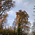 Lac du Houga et Lever de soleil 051218