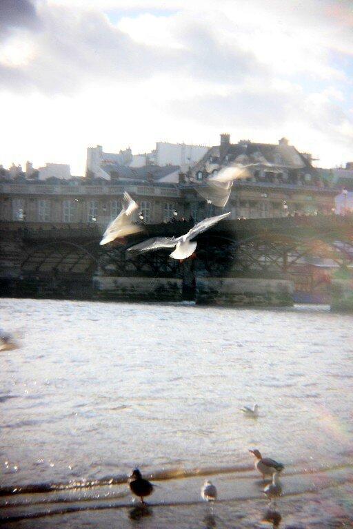 12-Quai de Seine, crue (holga)_7498