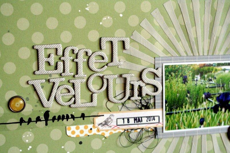 Effet velours_détail1