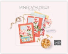 Image Mini catalogue Blog