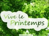 mini_42981vive_le_printemps
