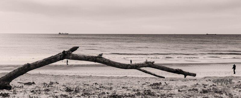 Tarnos la plage