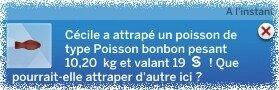 Poisson Bonbon