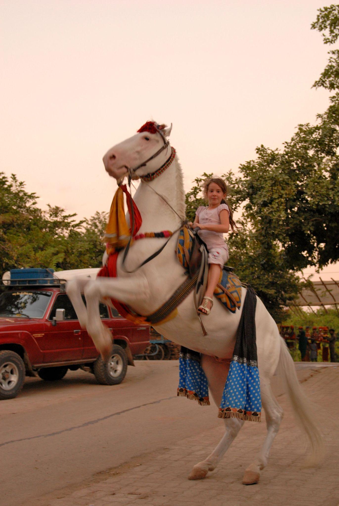 Julie et son cheval magique