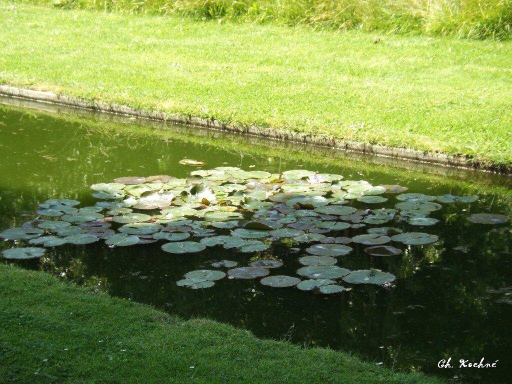 Jardins Kerdalo 5 Photo De Album Bretagne Cotes D Armor 1