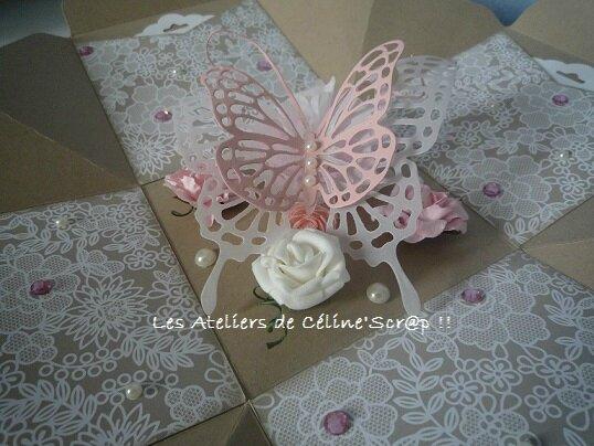 Boîte papillon 6