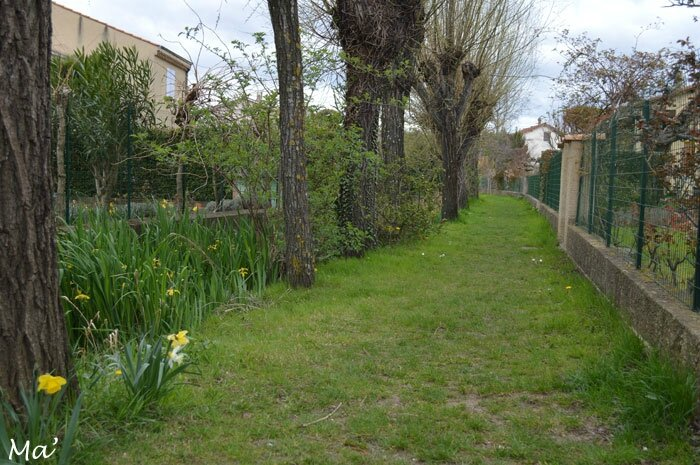 150329_canaux_chateauvert9