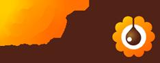 logo_dlys_couleurs_chocolats
