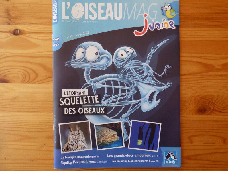 Oiseau Mag Jr Hiver 19 (1)
