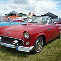 FORD Thunderbird 2door convertible 1955 Eutingen im Gau (1)