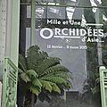 Orchidées...
