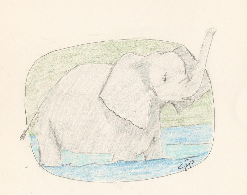 L'éléphanteau agite sa trompe et ses oreilles