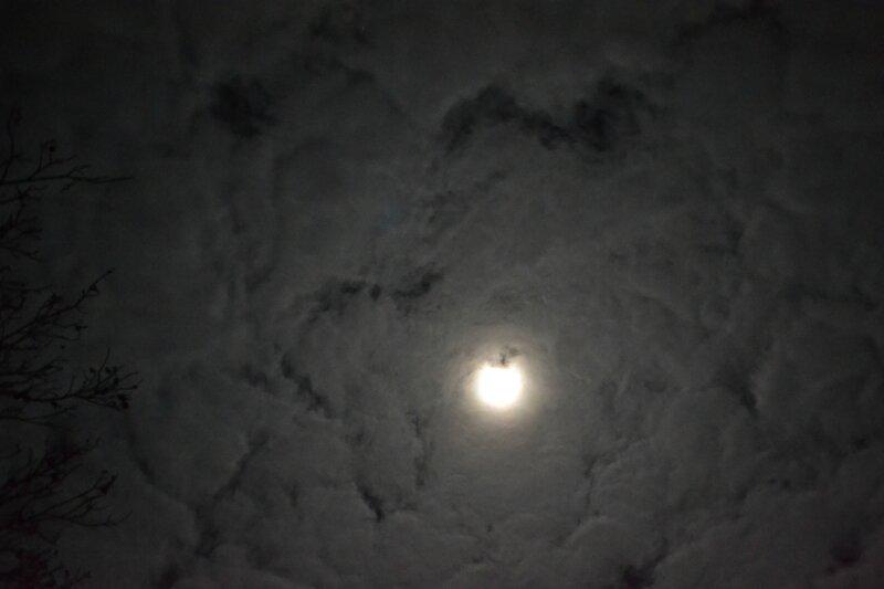 La tête dans les nuages MAIS LE COEUR DANS LES ETOILES