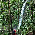 2 Cascades (3)