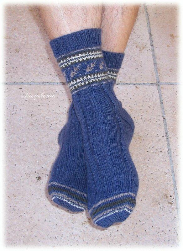 october leaves sock 1