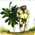 Adam et Eve chez les Islamiques