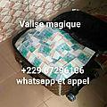 Valise magique magnetique