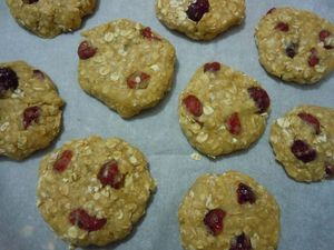 cookies flocons d'avoine cranberries (30)