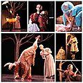 Le merveilleux spectacle de la compagnie de danse l'eventail revient le 11 mars à meudon