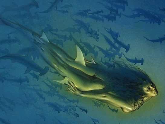 sirène-requin